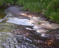 Example of Foam caused by turbulence on Black River