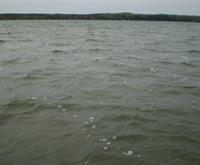 Example of Langmuir Foam on Orr Lake